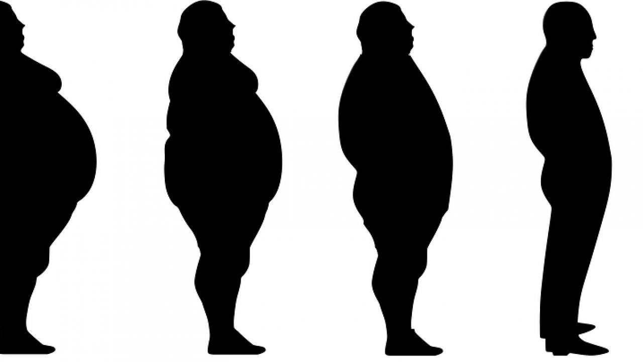 quante calorie si bruciano per perdere 1 kg
