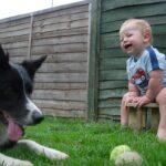 Quali cani sono più adatti ai bambini? Ecco le razze